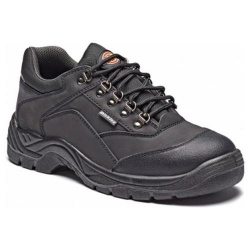 Dickies FA9006 Norden Shoe