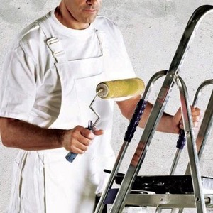 Dickies Painters