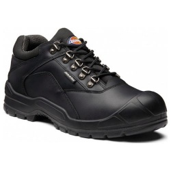 Dickies FA9006S Norden II Safety Shoe