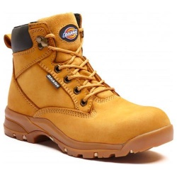 Dickies Corbett Women's Safety Boot FC9523